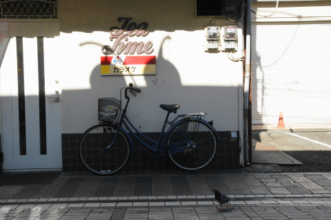 DSC00478N.JPG